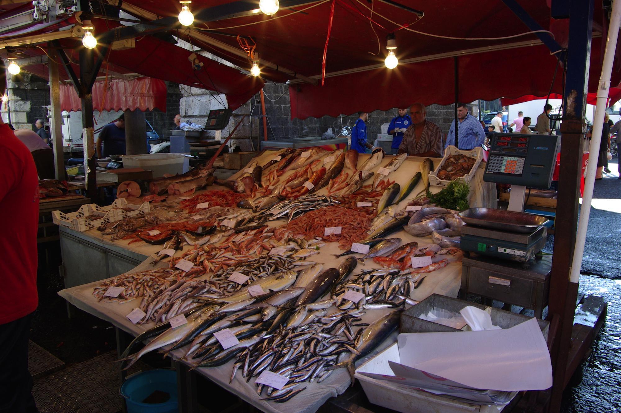 {{de|Italien, Sizilien, Catania, Fischmarkt}} {{en|Italy, Sicily, Catanaia,  fish market}}