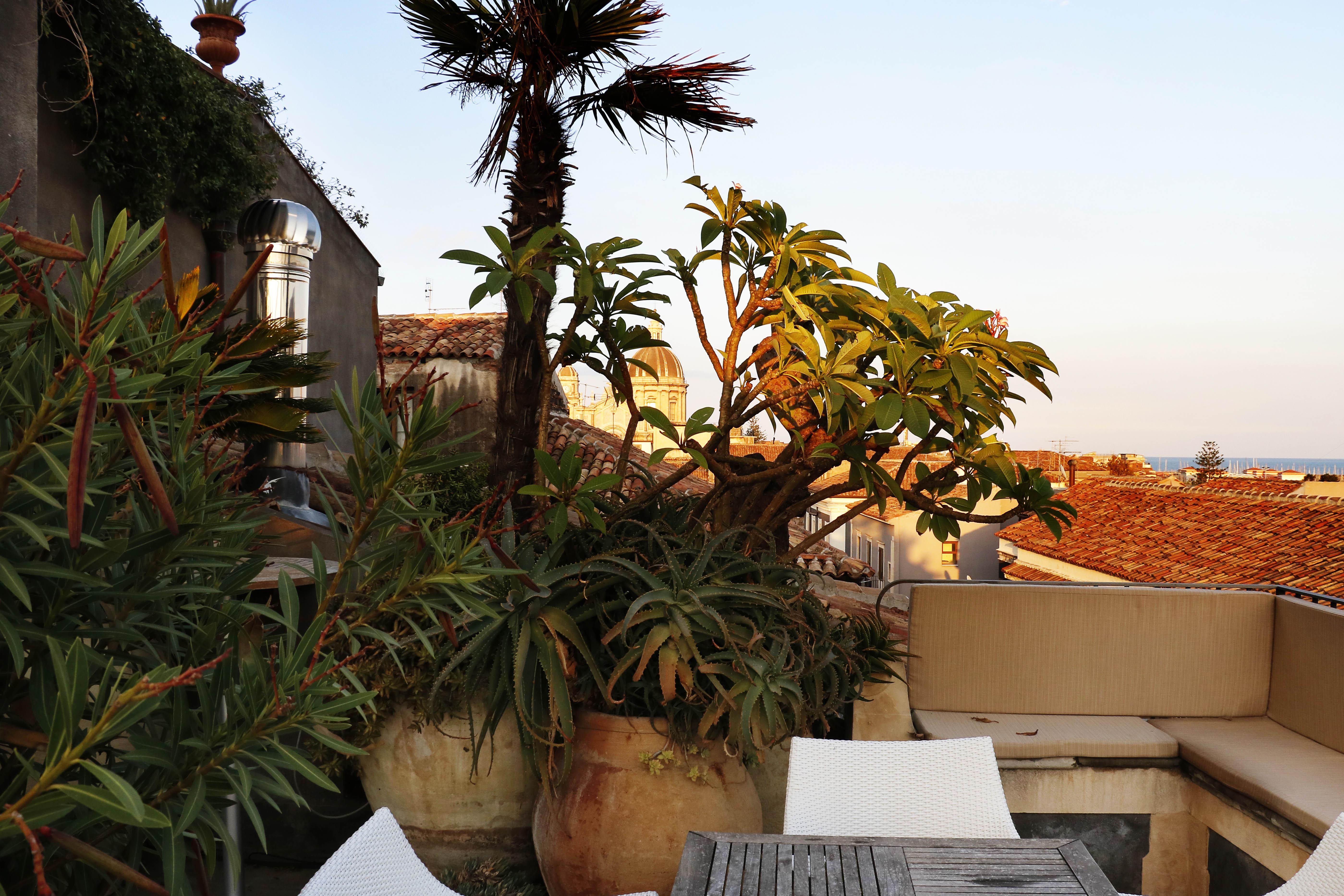 Living & Rooftop