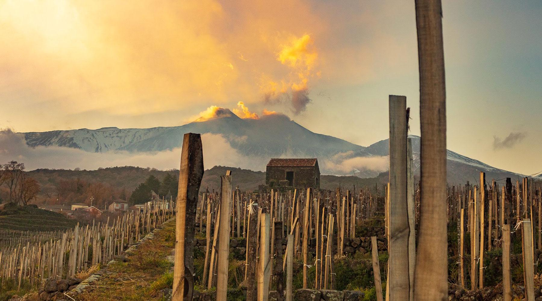 benanti-vino-etna-sicilia-home-min
